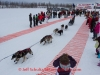 Benjamin Harper leaves the start line of the 2014 Jr. Iditarod Sled Dog Race from Happy Trails Kennel, Big Lake, Alaska Saturday February 22, 2014   Junior Iditarod Sled Dog Race 2014 PHOTO BY JEFF SCHULTZ/IDITARODPHOTOS.COM  USE ONLY WITH PERMISSION