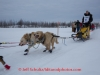 Conway Seavey leaves the start line of the 2014 Jr. Iditarod Sled Dog Race from Happy Trails Kennel, Big Lake, Alaska Saturday February 22, 2014   Junior Iditarod Sled Dog Race 2014 PHOTO BY JEFF SCHULTZ/IDITARODPHOTOS.COM  USE ONLY WITH PERMISSION
