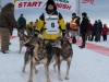 Nicole Forto leaves the start line of the 2014 Jr. Iditarod Sled Dog Race from Happy Trails Kennel, Big Lake, Alaska Saturday February 22, 2014   Junior Iditarod Sled Dog Race 2014 PHOTO BY JEFF SCHULTZ/IDITARODPHOTOS.COM  USE ONLY WITH PERMISSION